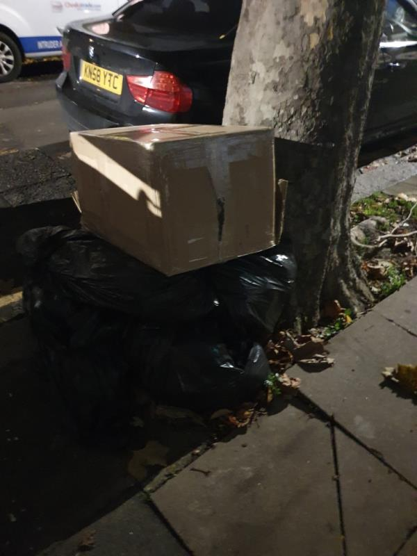 rubbish dumped on pavement by tree-33 Lansdown Road, Upton Park, E7 8NF