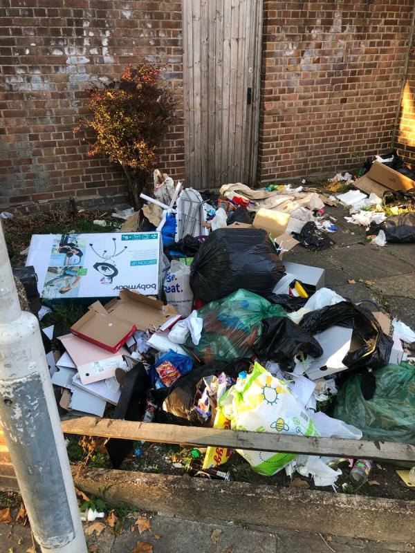 3rd report! No action!!!! Major flytip growing by the day! Rotten food human faeces!!! Major health hazard.-64 Salisbury Road, Manor Park, E12 6AB
