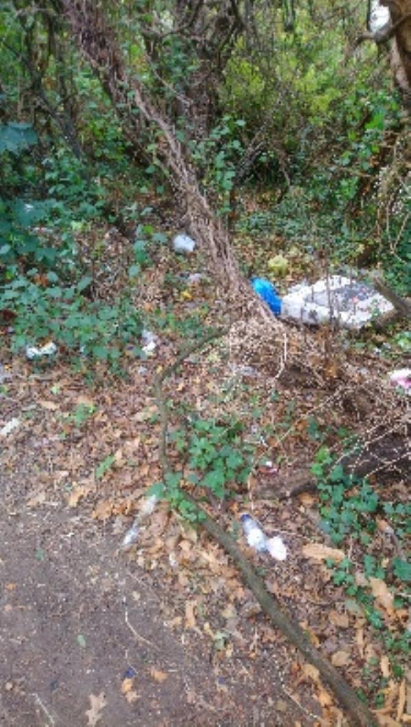 Litter and rubbish under trees by path end of Fawley Road -55 Fawley Road, Reading, RG30 3EN