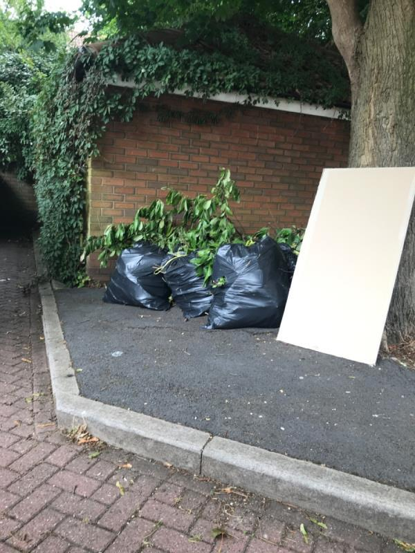 Garden waste and wood -3 Latham Close, London, E6 5SF