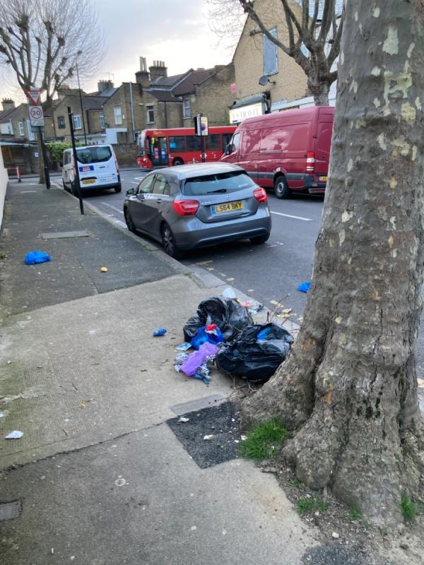 Rubbish bags -flytipping-food waste outside 57 Wilson road. Please clean urgently -55 Wilson Road, Plaistow, E6 3EF