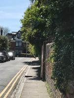 Entire path unusable because of overgrown trees  image 1-Branksome Court, Prospect St, Reading RG1 7XR, UK