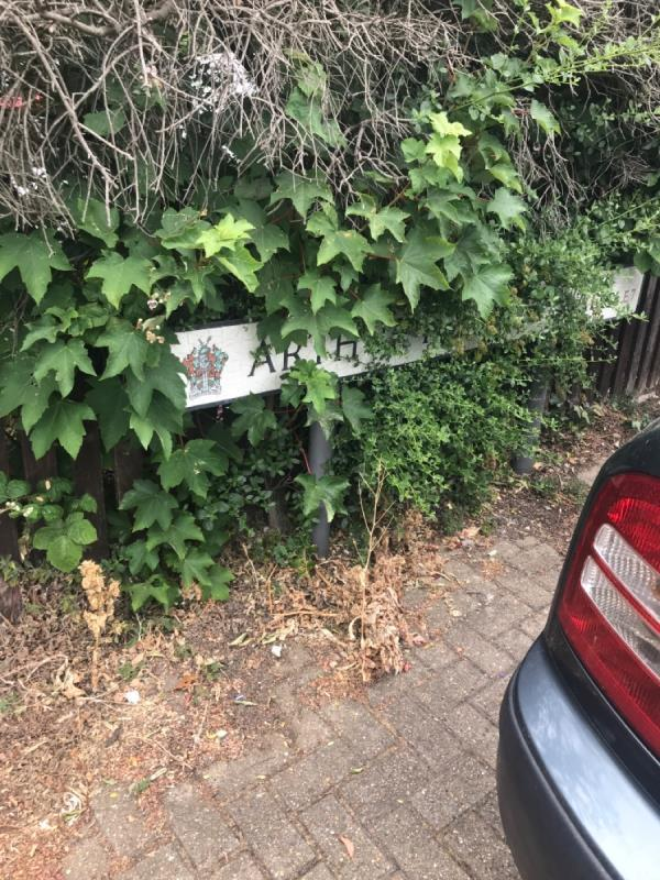 FAO enforcement, overgrown bush in private garden covering name sign plate again -34 Magpie Close, London, E7 9DE