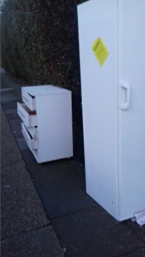 A fridge freezer and a chest drawer dumped outside 58 Egham Road -58 Egham Road, London, E13 8PD