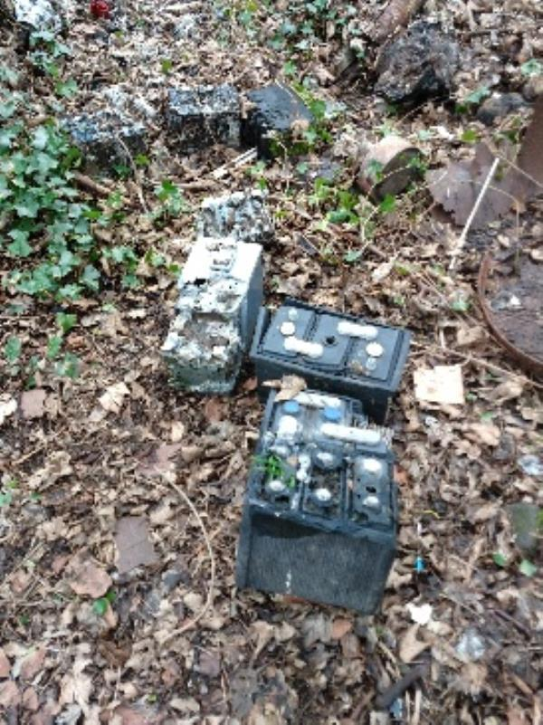 view island 7 large car or boat batteries in undergrowt near the pond-Caversham Lock House Thames Side, Reading, RG1 8BP