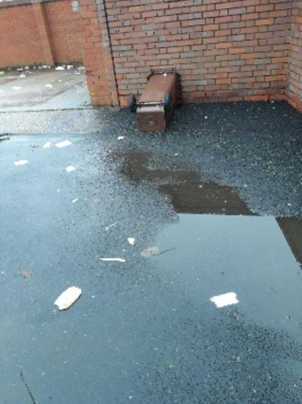 this bin has been dumped over a year now ,spilling out its rubbish -24 Newman Ave, Lanesfield, Wolverhampton WV4 6BZ, UK