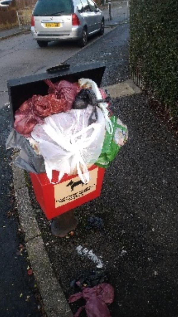 Bin full of household waste no evidence taken -22 Merton Road South, Reading, RG2 8AX