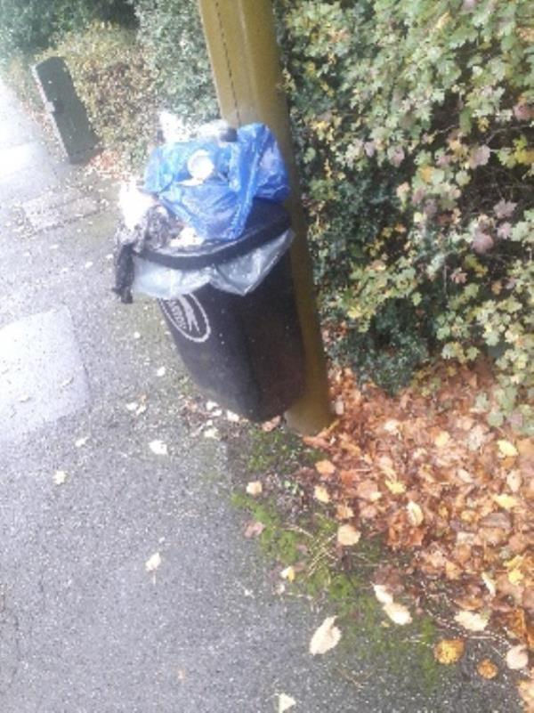 overflowing bin -44b Sandown Road, Leicester, LE2 2BJ