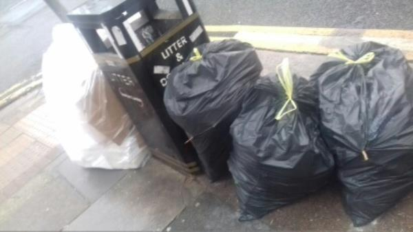 1 household wastes bag and 3 bags of garden wastes dumped by the junction near 16 Walton Road E13-18 Walton Road, London, E13 9
