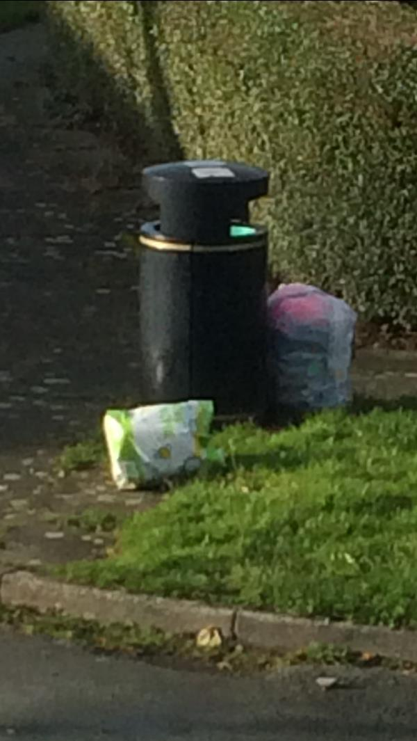 Fly tipping outside of bin for over a week, bin must not been emptied for this time . If inside of bin is not overflowing then it does not get emptied. -57 Moss Bank, Winsford, CW7 2EL