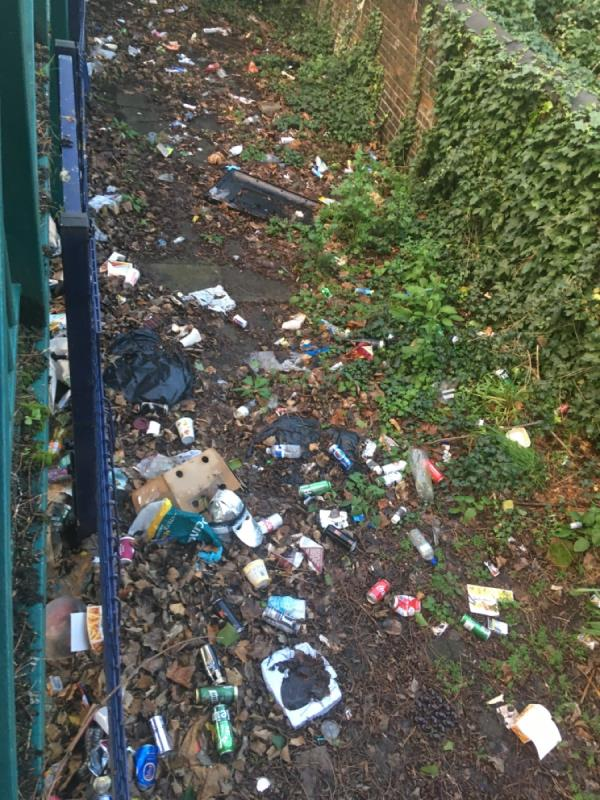 Can a litter bin be put at the beginning of the footbridge Earlham Grove side? Maybe this mean less beer cans and litter tossed over footbridge . I mean its not like you're cleaning that litter away. Rats next.  image 2-6 Forest Ln, Forest Gate, London E7 9BG, UK