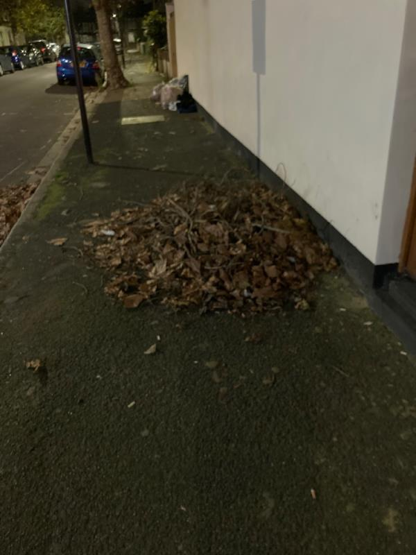 Branches left blocking the pavement for weeks. Bags of leaves causing fly ripping -26 Wilson Road, Plaistow, E6 3EF