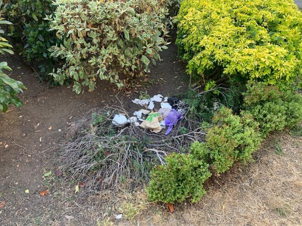 Previously reported but not cleaned as yet -84 McGrath Road, London, E15 4ST