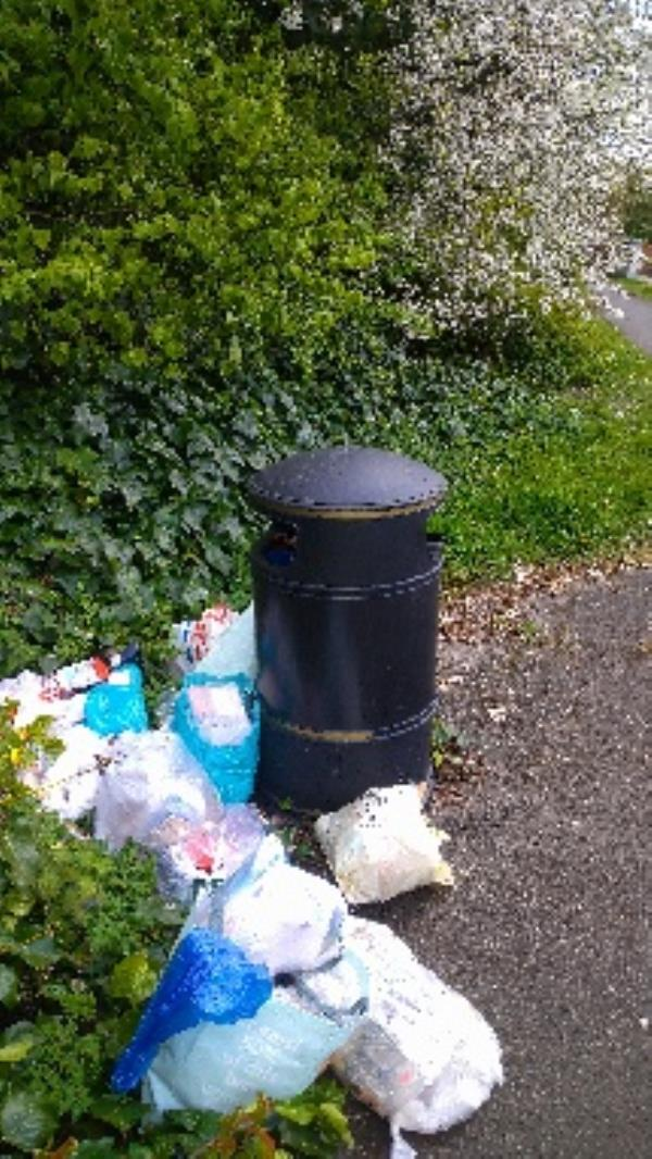 Lots of flytipped household waste bags no evidence taken -53 Wolseley Street, Reading, RG1 6AZ