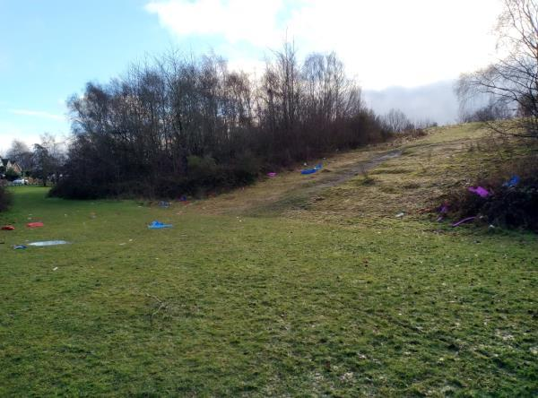 It looks like kids have been sledding down the bank, behind Grapes Pool, and all their plastic sleds have been broken up and scattered. image 1-251 Moseley Road, Bilston, WV14 6HX