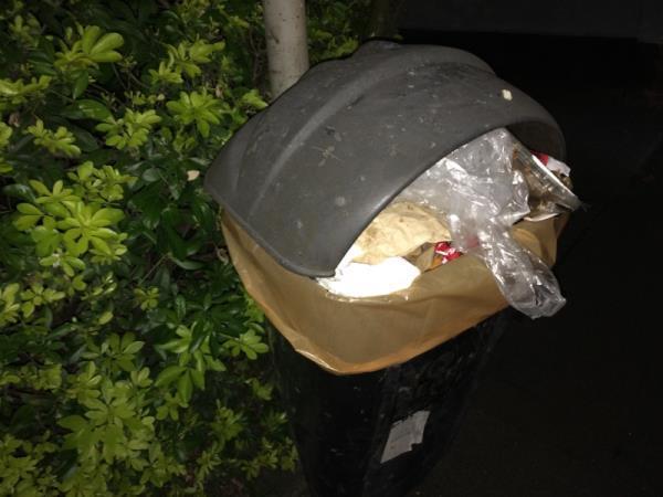 Overflowing bin -132 Castle Hill, Reading, RG1 7SY