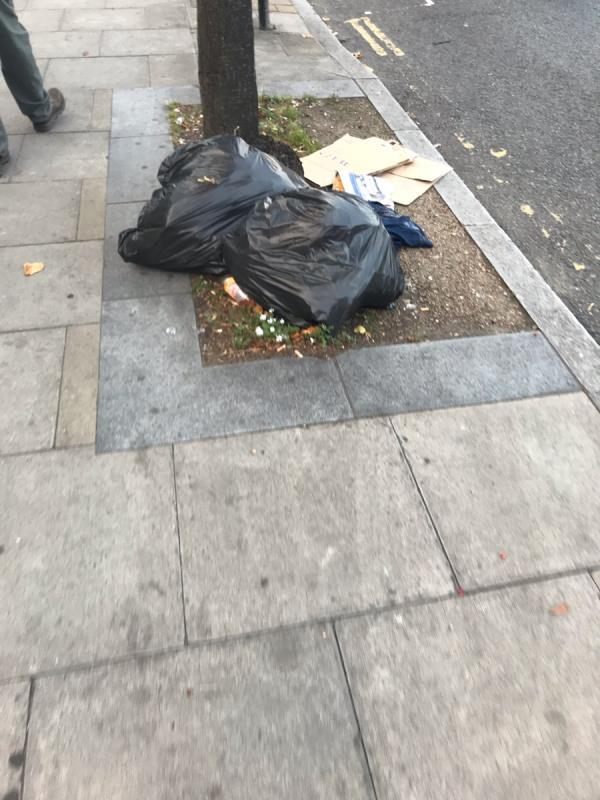 Bin bags are dumped outside 265 Greenford Road Ub6 -261 Greenford Road, London, UB6 8QZ