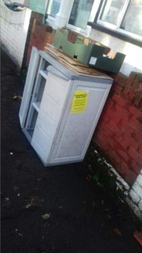 A plastic cupboard and cardboard boxes dumped outside 34 Humberstone Road -1 Humberstone Road, London, E13 9NL