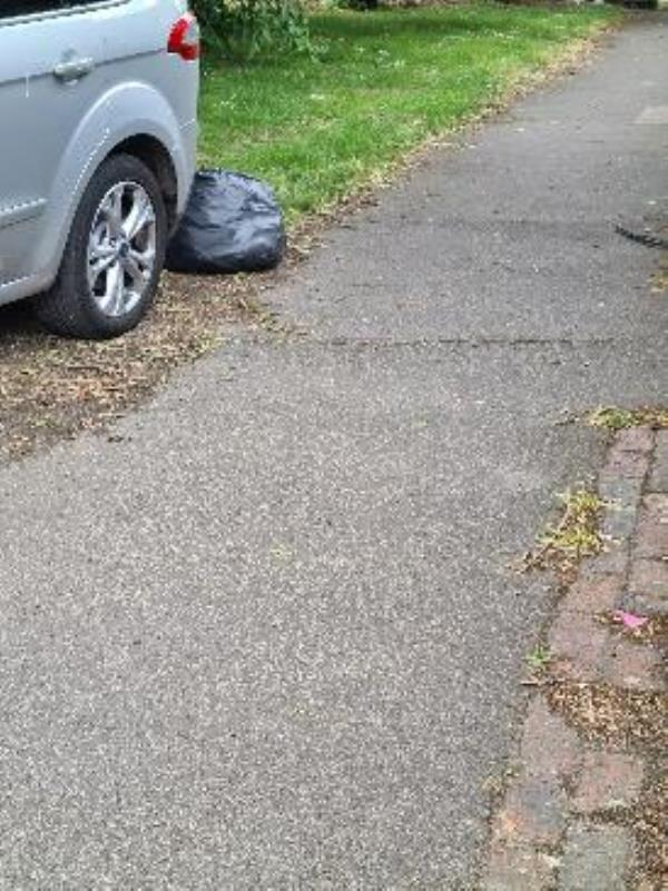 rubbish dumped by the resident of 153 caswell close. vomes up as 156 but its outside 153-156 Caswell Close, Farnborough, GU14 8TG
