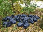 flytipping of drugs grow in woods both ends of child's ave on woodcross open space image 1-122 Childs Avenue, Bilston, WV14 9XB
