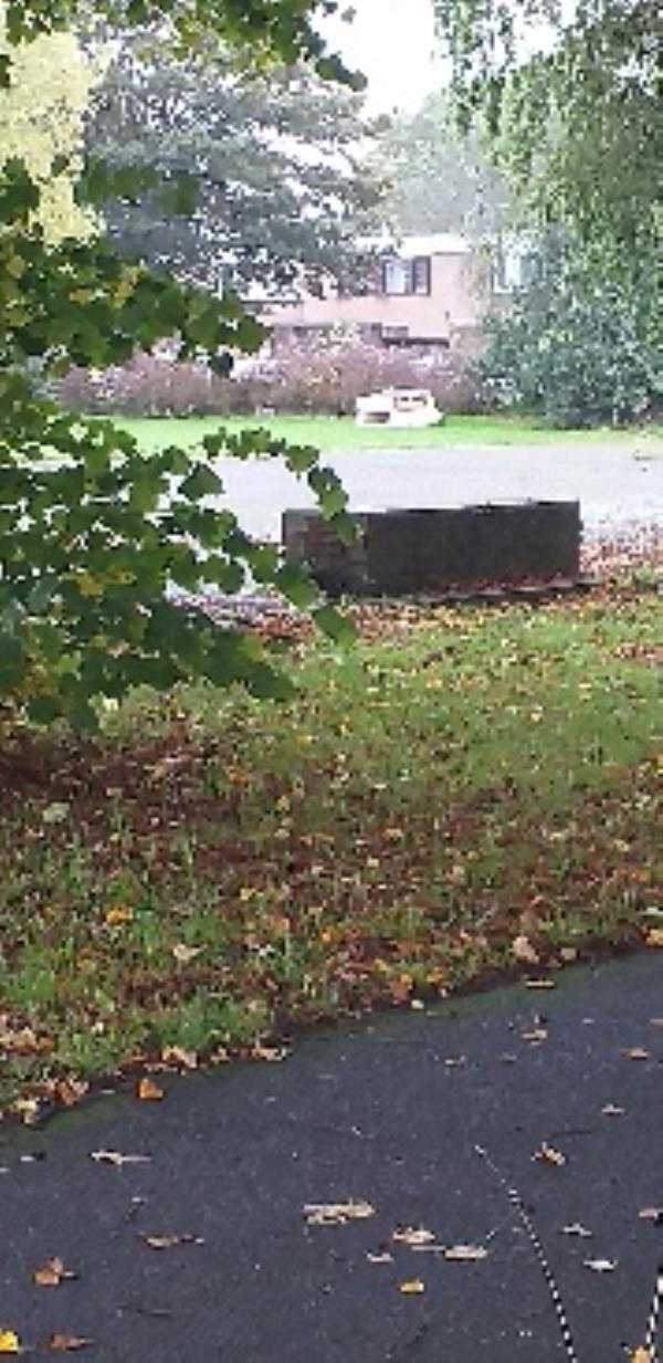 bed left in area behind water building on wren way but will need to turn into carmarthen then caswell close to access-23 Wren Way, Farnborough, GU14 8TD