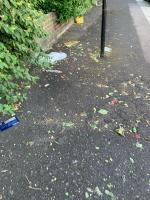 Kelland road needs a good sweeping as mess and leafs blown about in the wind  image 1-2 Kelland Road, London, E13 8DS