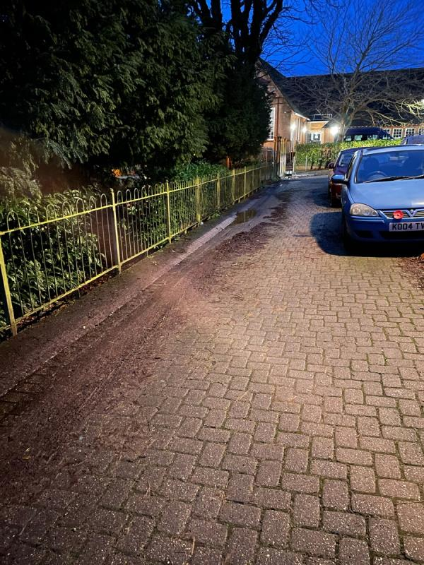 In front of the houses in Arlington Terrace there are pulped leaves on the road.  Making it slippy. Your mini road sweeper regularly sweeps the top of the road and the path in the park.  Please can it come around the corner and sweep in front of the houses.  Thank you -11 Arlington Terrace, Aldershot, GU11 3JF
