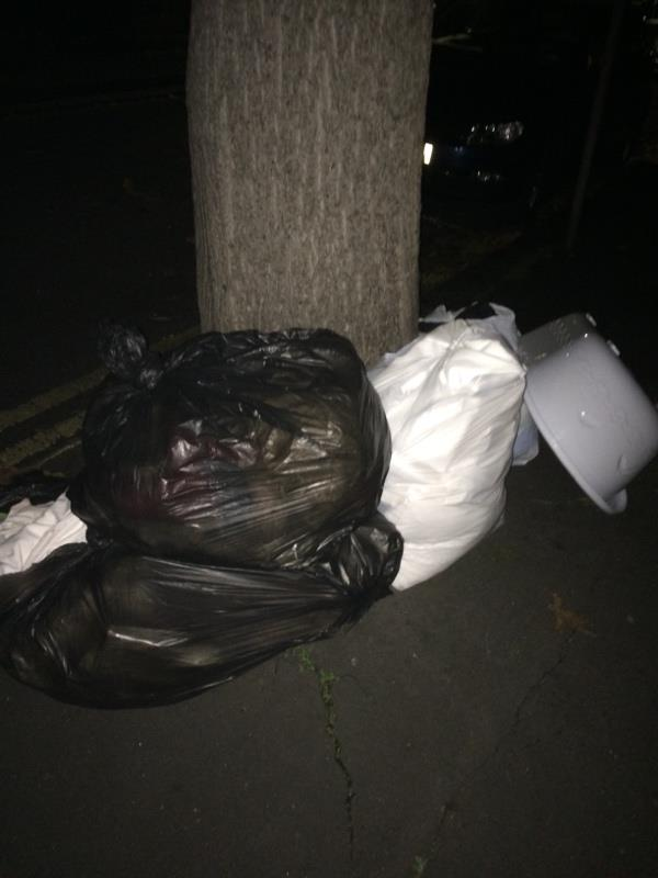Bags of rubbish - some open and other waste dumped on pavement. Find them and fine them.-31a Prince of Wales Avenue, Reading, RG30 2UH