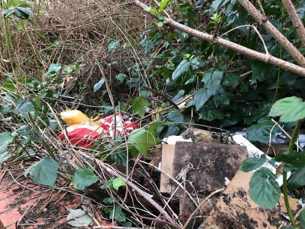 Hedgerow full of litter & badly overgrown. -6 Edgar Milward Close, Reading, RG30 6AA