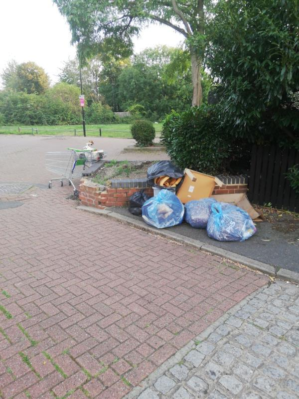 this was reported before and you marked it as done. it wasn't. and now people are dumping even more shit -35 Allhallows Road, London, E6 5SZ