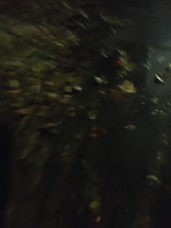 Street swwwp image 1-24 Chant Square, London, E15 4RT