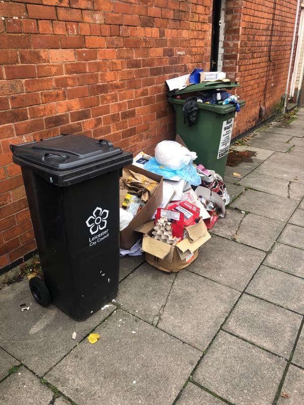 "Put up a ""No Fly Tipping"" sign at the Prime Fly Tipping Hotspot on Hamilton Street!  We, the residents of Hamilton Street, have been campaigning for this for the past 10 years. Please contact Mr Shah, the owner of the property, on 07801354262. He wants you to put up a ""No Fly Tipping"" sign on his wall. He is waiting for you call for years. The area is rat infested  due to the garbage. Please pass it on the your health & safety team.   #FlyTippingHotspot #FlyTippingCampaign #PutUpASign-63 Hamilton St, Leicester LE2 1FQ, UK"