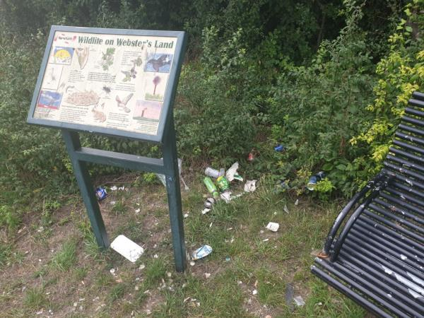 Litter in park near Webster's Land bench-16 Sally Murray Close, Manor Park, E12 5NX