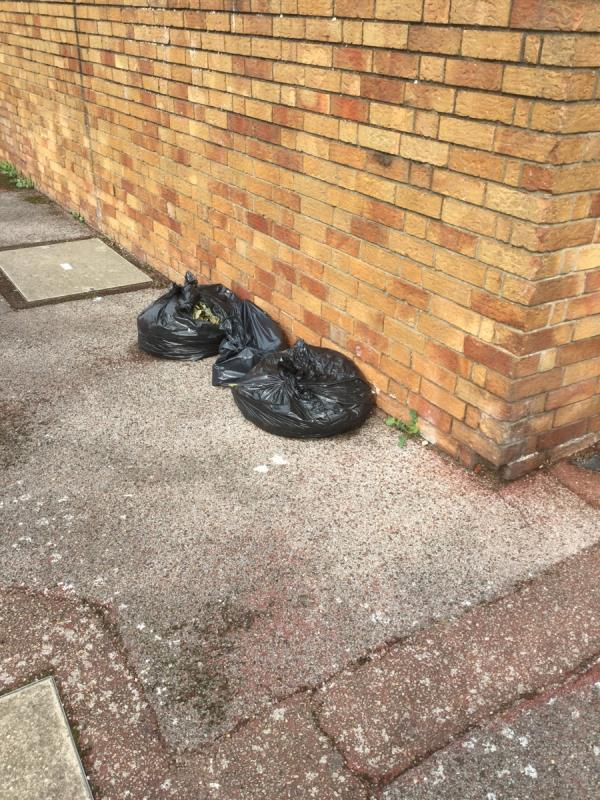 3 sacks of green waste -4c First Avenue, Plaistow, E13 8AR