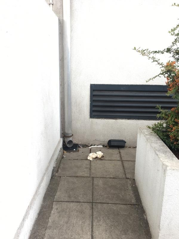 Human excrement, please clean and disinfect the corner. -Rear Of 329 Katherine Road, London, E7 8PF