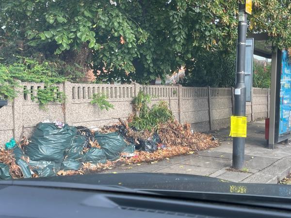 Fly tipped garden waste -47 Old Oak Road, Acton, W3 7HW