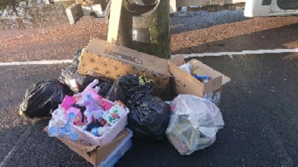 House old waste removed fly tipping -180 Luscinia View Napier Road, Reading, RG1 8DF