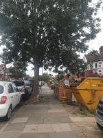 the roots have grown to the point that disabled access is prohibited.  image 1-20 Longford Avenue, London, UB1 3QN