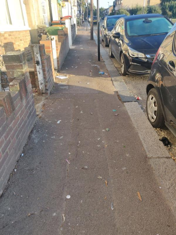 The bins were collected on Tuesday but there is a large amount of litter all over the road coming down from the shop. the photos don't get this across. image 2-69 Wellington Road, London, E7 9BU