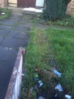 Beer cans & cider bottles galore , rubbish & bedding @ both door ways. The back entrance also a state & being used as a public toilet for street hobos a & drinkers/ nittys. All this is in full public view. Even saw a woman on the grounds digging up the daffodils to take home . What an absolute disgrace that's been allowed to continue for months on a main road 👎🏾 image 1-Methodist Manse Woodgrange Road, London, E7 0QH