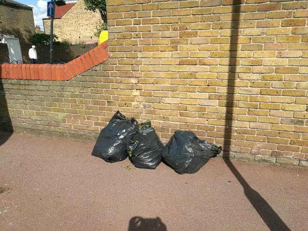 garden waste fly tipped again-21 Essex Road, London, E12 6RF