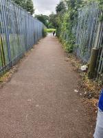 Glass all over floor stinging nettles ,weeds need cutting back and rubbish every where. Young children have to walk down there to get to school gates. -19 Cort Crescent, Leicester, LE3 1QH