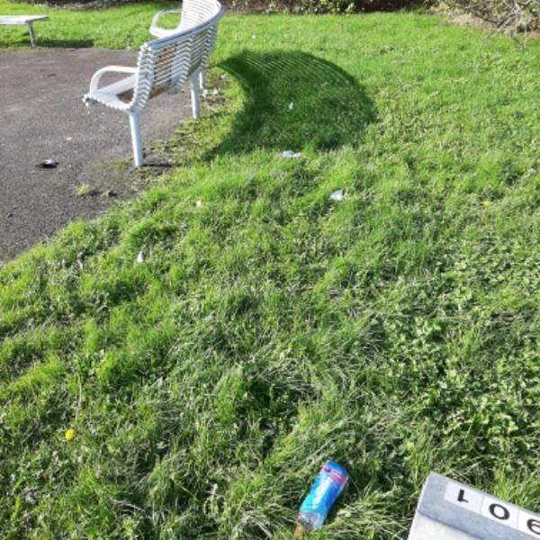 Idverde from NP Zone2 EBC 22nd Oct 12noon please could you clear all the litter in Holly Place Park, there is a lot of it across the park but mainly around the play areas.   thank you-20 Byland Close, Eastbourne, BN22 0UE
