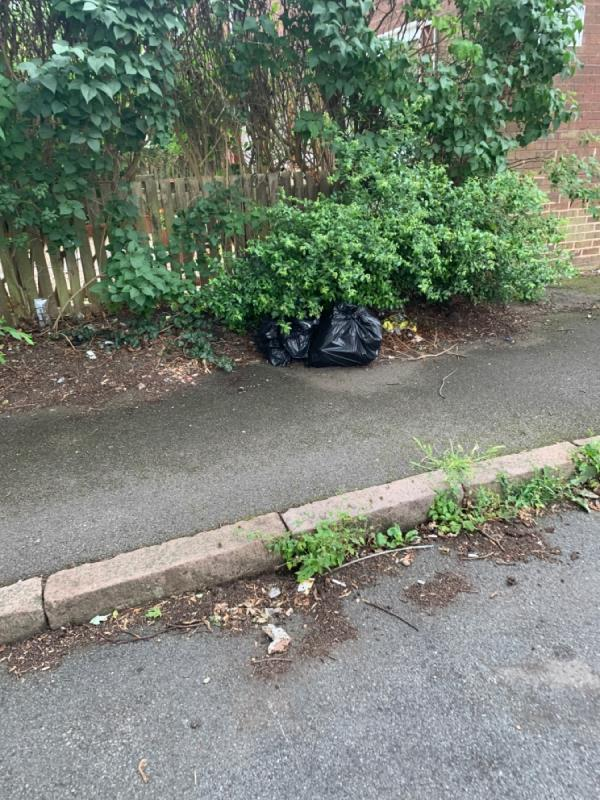 Dumped bags of rubbish-74 Bosworth Street, Leicester, LE3 5RA