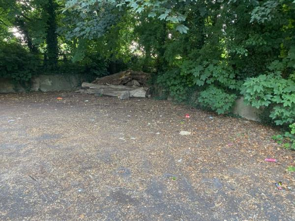 Lots of litter in car park next to eco house again-424 Hinckley Road, Leicester, LE3 6SJ