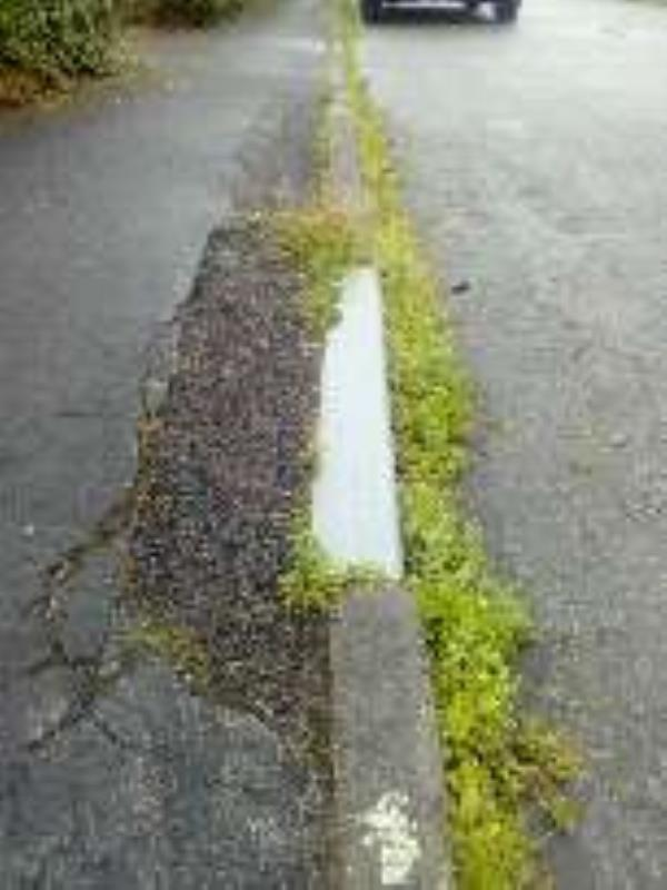 whole street has damage to paths and gully is full of weeds and never swept-6 Hewitt Dr, Winsford CW7 3NR, UK
