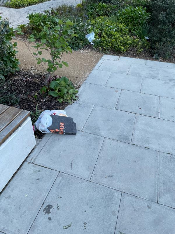 Calomtinued litter from banjos & papas on barking rd-3 Priory Road, London, E13 9FQ