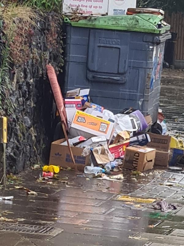 A constant supply of crap at this recycling location. Why can't a camera cover the area  Or get rid of of recycling bins if they can't be used responsibly. The council should pull its finger out of its arse and get on top of the fly tipping epidemic. -138 Church Rd, London E12 6HL, UK