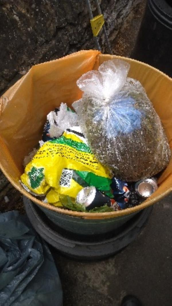 Bin full of household waste and garden waste no evidence taken -6 Armour Road, Reading, RG31 6HS