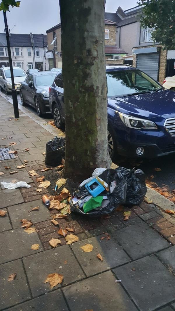 nags of rubbish-10 Strone Road, Upton Park, E7 8EU